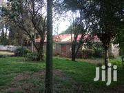 Lovely 3 Bedroom Bungalow Plus Sq to Let Karen | Houses & Apartments For Rent for sale in Nairobi, Karen