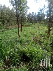 2 Acre In Ikinu On Sale 80 M From The Tarmac | Land & Plots For Sale for sale in Kiambu, Ndumberi