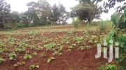 Kibwezi 350 Acres | Land & Plots For Sale for sale in Nyeri, Kamakwa/Mukaro