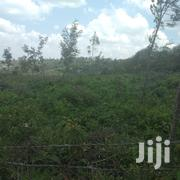 On Sale 4 Acre Land in Ngong Fronting Tarmac | Land & Plots For Sale for sale in Kajiado, Ngong