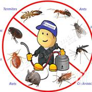 Fumigation Services | Cleaning Services for sale in Mombasa, Bamburi