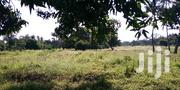 7 X (50 X 100) Plots Mtondia Kilifi For Sale | Land & Plots For Sale for sale in Kilifi, Sokoni
