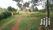 Nyeri Chaka 50 Acres at 2.5m | Land & Plots For Sale for sale in Nyeri, Kamakwa/Mukaro