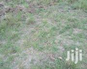 Property Managment And Selling Plots | Land & Plots for Rent for sale in Kiambu, Juja