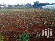 One Acre Land for Sale Elgon View Eldoret.   Land & Plots For Sale for sale in Uasin Gishu, Racecourse