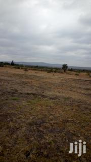 Rongai_tuala 1/4 Acre for Sale | Land & Plots For Sale for sale in Nairobi, Kilimani