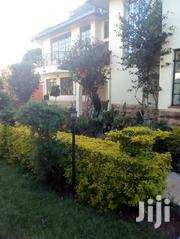 4 Bedroom House In Karen Miotoni For Rent   Houses & Apartments For Rent for sale in Nairobi, Nairobi Central