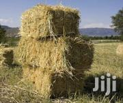 Animal Hay | Feeds, Supplements & Seeds for sale in Laikipia, Nanyuki
