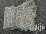 Hay Grasss | Feeds, Supplements & Seeds for sale in Laikipia, Nanyuki