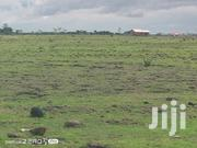 Prime Land For Sale | Land & Plots For Sale for sale in Nyeri, Mugunda