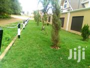 Landscaping Services   Landscaping & Gardening Services for sale in Nairobi, Karura