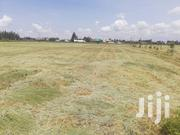 Quarter Acre at Kabarak | Land & Plots For Sale for sale in Nakuru, Soin (Rongai)