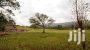 Half Acre Land for Sale - Ngong (Owner) Red Soil | Land & Plots For Sale for sale in Kajiado, Ngong
