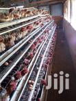 Chicken Cages For Sale In Nairobi 256 Birds | Farm Machinery & Equipment for sale in Kahawa, Nairobi, Kenya