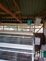 Battery Cage Sytem Prices In Kenya | Farm Machinery & Equipment for sale in Nairobi, Kahawa
