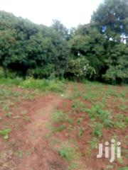 10 Acres Farmland | Land & Plots For Sale for sale in Nyandarua, Mirangine