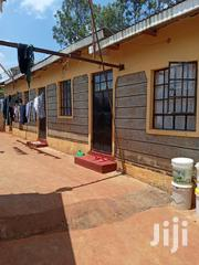 Executive Single Rooms To-Let in Ruaka Near Club Decimo | Houses & Apartments For Rent for sale in Kiambu, Ndenderu