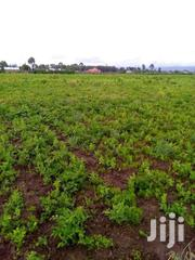 Flyover  Two And A Quarter Acres With Title At 4.5m  Neg | Land & Plots For Sale for sale in Kiambu, Ngewa