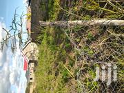 1/4 Acre of Land   Land & Plots For Sale for sale in Machakos, Ndalani