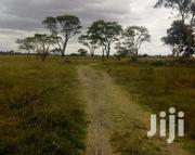 11and 3/4an Acre In Makueni For Sale   Land & Plots For Sale for sale in Makueni, Masongaleni