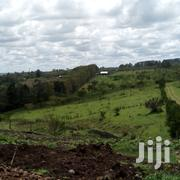 An Eigth Land For Sale | Land & Plots For Sale for sale in Kajiado, Ngong