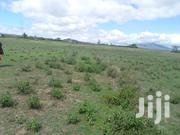 3 Acres for Sale in Naivasha Mirera. | Land & Plots For Sale for sale in Nakuru, Biashara (Naivasha)
