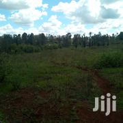 Commercial Plots 40*80 | Land & Plots For Sale for sale in Murang'a, Kakuzi/Mitubiri