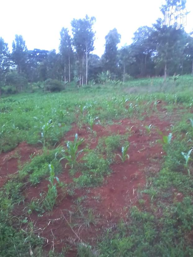 One Acre Kiandu Nyeri