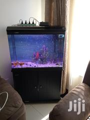 Imported Aquarium | Pet's Accessories for sale in Nairobi, Nairobi Central