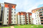 Executives 2 Bedrooms to LET   Houses & Apartments For Rent for sale in Nairobi, Kahawa West