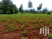 Shamba For LEASE | Land & Plots for Rent for sale in Nyandarua, Mirangine