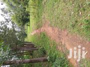 Land for Sale   Land & Plots For Sale for sale in Bungoma, Musikoma
