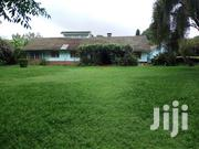 3 Bedroom Bungalow Ti Let in Lavington | Houses & Apartments For Rent for sale in Nairobi, Nairobi Central