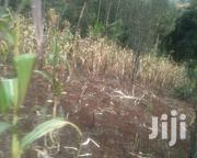 Kanyariri 3(1/8) Plots at 4.5m | Land & Plots For Sale for sale in Kiambu, Kabete