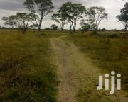 1/8an Acre In Kiserian Kajiado Olepolos For Sale | Land & Plots For Sale for sale in Kajiado, Keekonyokie (Kajiado)