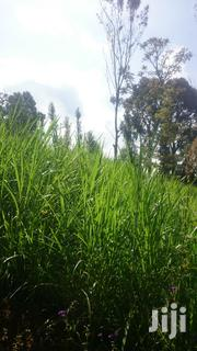 Plots for Sale in Ngong Matasia | Land & Plots For Sale for sale in Kajiado, Ngong