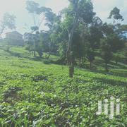 3quatre In Majimbo | Land & Plots For Sale for sale in Embu, Mbeti North