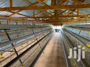 Modern Poultry Chicken Cages For 250 Birds | Livestock & Poultry for sale in Nairobi, Kahawa