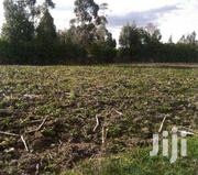 50by100 Plot in Lanet, Nakuru | Land & Plots For Sale for sale in Nakuru, Dundori