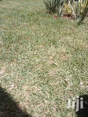 Free Hold Tittle | Land & Plots For Sale for sale in Kisumu, Migosi
