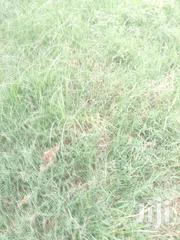 KILIFI/MAVUENNI/3B/342 Farm Plot2.5acres . | Land & Plots For Sale for sale in Kilifi, Mnarani