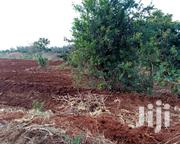 1/8 Plot for Sale in Nakuru | Land & Plots For Sale for sale in Nakuru, Nakuru East