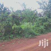 50 By 100 In Muthatari | Land & Plots For Sale for sale in Embu, Mbeti North