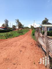 Prime Plot 50 by 100 for Sale at Kibiko Ngong | Land & Plots For Sale for sale in Kajiado, Ngong