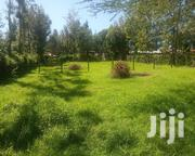 Plot for Sell | Land & Plots For Sale for sale in Bomet, Nyangores