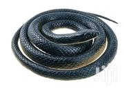 Realistic Rubber Fake Snake Toy 50 Inch For Deterring Monkeys | Toys for sale in Nairobi, Westlands