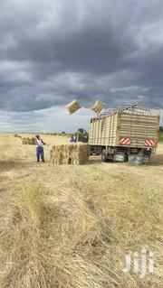 All Types Of Hay Availlable At Friendly Price | Feeds, Supplements & Seeds for sale in Nakuru, Nakuru East