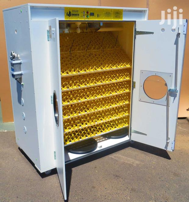 Archive: Eggs Incubator That Are Fully Automatic At Fair Prices