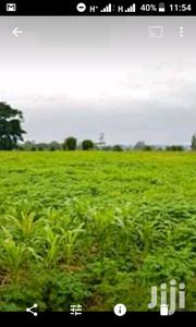 1 Acre of Land Available for Sale | Land & Plots For Sale for sale in Busia, Malaba North