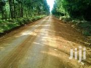 Ngeria 4 Acres Farm | Land & Plots For Sale for sale in Uasin Gishu, Kapsoya